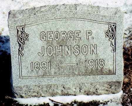 JOHNSON, GEORGE P. - Calhoun County, Michigan | GEORGE P. JOHNSON - Michigan Gravestone Photos