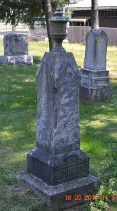 JOHNSON, HENRIETTA - Calhoun County, Michigan | HENRIETTA JOHNSON - Michigan Gravestone Photos