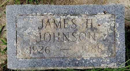 JOHNSON, JAMES H - Calhoun County, Michigan | JAMES H JOHNSON - Michigan Gravestone Photos