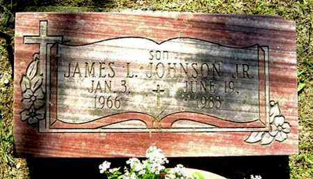 JOHNSON, JAMES L, JR - Calhoun County, Michigan | JAMES L, JR JOHNSON - Michigan Gravestone Photos
