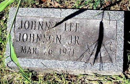 JOHNSON, JOHNNY LEE JR - Calhoun County, Michigan | JOHNNY LEE JR JOHNSON - Michigan Gravestone Photos