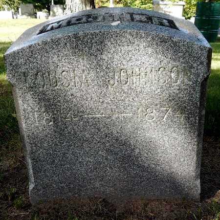 JOHNSON, LOUISA - Calhoun County, Michigan | LOUISA JOHNSON - Michigan Gravestone Photos