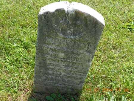 JOHNSON, MARY A. - Calhoun County, Michigan   MARY A. JOHNSON - Michigan Gravestone Photos