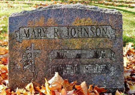 JOHNSON, MARY R - Calhoun County, Michigan   MARY R JOHNSON - Michigan Gravestone Photos