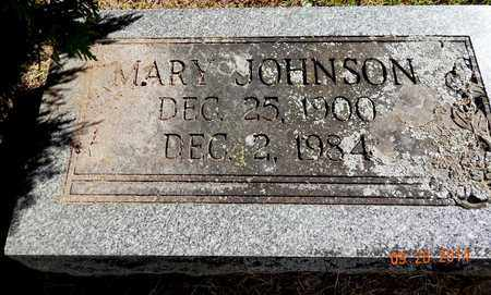 JOHNSON, MARY - Calhoun County, Michigan | MARY JOHNSON - Michigan Gravestone Photos