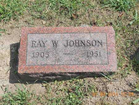 JOHNSON, RAY W. - Calhoun County, Michigan | RAY W. JOHNSON - Michigan Gravestone Photos