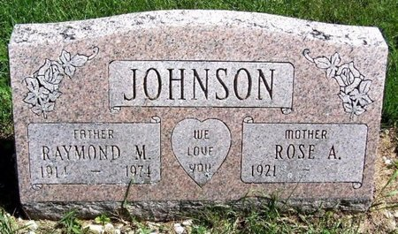 JOHNSON, RAYMOND M - Calhoun County, Michigan | RAYMOND M JOHNSON - Michigan Gravestone Photos