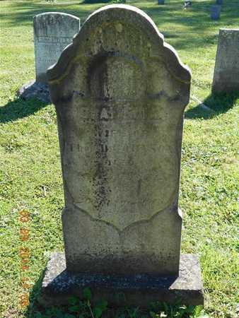 JOHNSON, S. AMELIA - Calhoun County, Michigan   S. AMELIA JOHNSON - Michigan Gravestone Photos