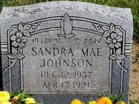 JOHNSON, SANDRA MAE - Calhoun County, Michigan | SANDRA MAE JOHNSON - Michigan Gravestone Photos