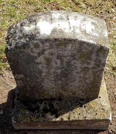 JOHNSON, STEPHEN V - Calhoun County, Michigan   STEPHEN V JOHNSON - Michigan Gravestone Photos