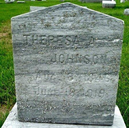 JOHNSON, THERESA A. - Calhoun County, Michigan | THERESA A. JOHNSON - Michigan Gravestone Photos