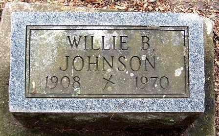 JOHNSON, WILLIE B - Calhoun County, Michigan   WILLIE B JOHNSON - Michigan Gravestone Photos