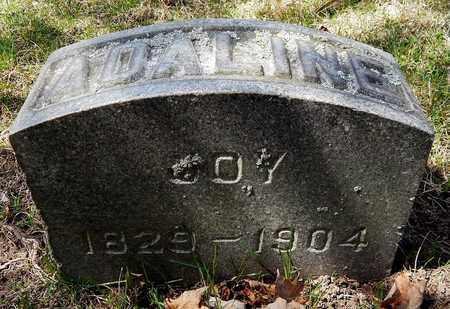 JOY, ADALINE - Calhoun County, Michigan | ADALINE JOY - Michigan Gravestone Photos
