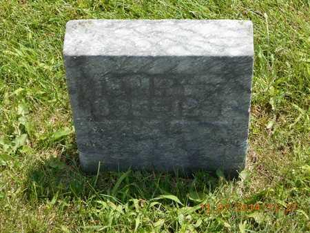 LAKER, HENRY F. - Calhoun County, Michigan   HENRY F. LAKER - Michigan Gravestone Photos