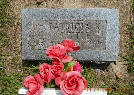 LITTLE, PATRICIA K. - Calhoun County, Michigan | PATRICIA K. LITTLE - Michigan Gravestone Photos