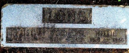 LONG, NELLIE - Calhoun County, Michigan | NELLIE LONG - Michigan Gravestone Photos