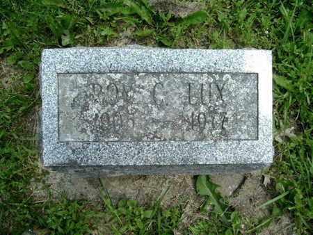 LUX, ROY - Calhoun County, Michigan | ROY LUX - Michigan Gravestone Photos