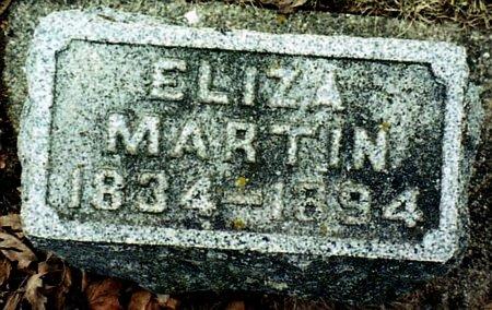 MARTIN, ELIZA - Calhoun County, Michigan | ELIZA MARTIN - Michigan Gravestone Photos