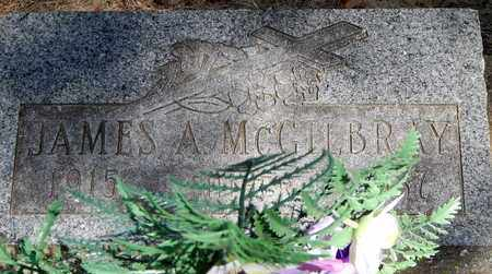 MC GILBRAY, JAMES A - Calhoun County, Michigan   JAMES A MC GILBRAY - Michigan Gravestone Photos