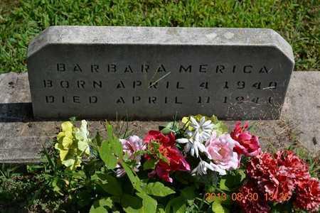 MERICA, BARBARA - Calhoun County, Michigan | BARBARA MERICA - Michigan Gravestone Photos