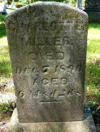 MILLER, CHAROTTE - Calhoun County, Michigan | CHAROTTE MILLER - Michigan Gravestone Photos