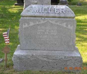 MILLER, ELIZABETH ANN - Calhoun County, Michigan | ELIZABETH ANN MILLER - Michigan Gravestone Photos