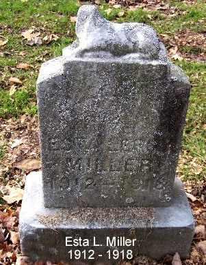 MILLER, ESTA - Calhoun County, Michigan | ESTA MILLER - Michigan Gravestone Photos