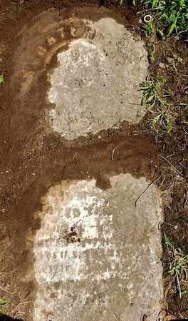MILLER, FOSTER D - Calhoun County, Michigan | FOSTER D MILLER - Michigan Gravestone Photos