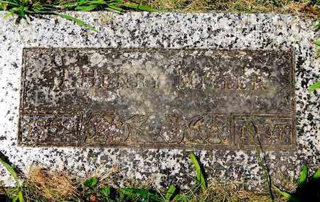 MILLER, J. HENRY - Calhoun County, Michigan   J. HENRY MILLER - Michigan Gravestone Photos