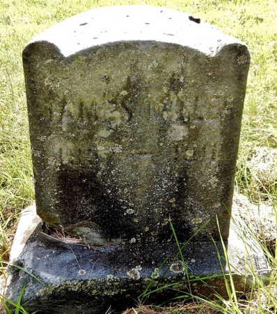 MILLER, JAMES - Calhoun County, Michigan | JAMES MILLER - Michigan Gravestone Photos