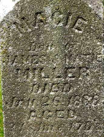 MILLER, MACIE - Calhoun County, Michigan   MACIE MILLER - Michigan Gravestone Photos