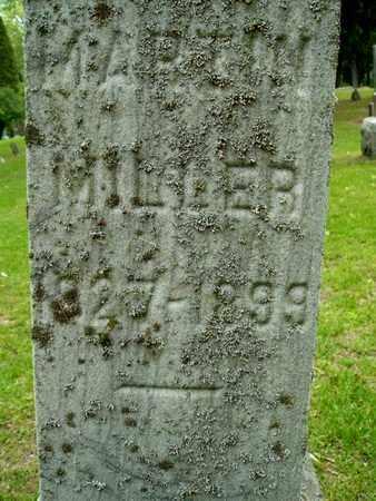 MILLER, MARTIN - Calhoun County, Michigan   MARTIN MILLER - Michigan Gravestone Photos