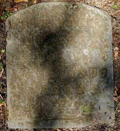 MILLER, WHITMAN B - Calhoun County, Michigan | WHITMAN B MILLER - Michigan Gravestone Photos