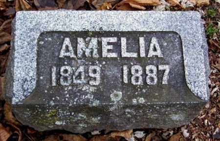 MOORE, AMELIA - Calhoun County, Michigan | AMELIA MOORE - Michigan Gravestone Photos