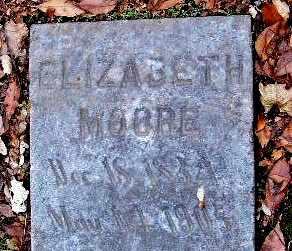 MOORE, ELIZABETH - Calhoun County, Michigan | ELIZABETH MOORE - Michigan Gravestone Photos