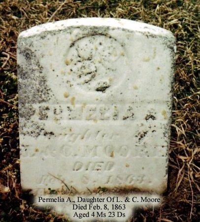 MOORE, PERMELIA - Calhoun County, Michigan | PERMELIA MOORE - Michigan Gravestone Photos