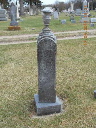 MOSS, HANNAH - Calhoun County, Michigan | HANNAH MOSS - Michigan Gravestone Photos