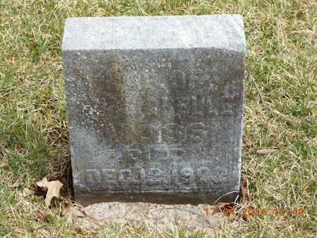 MOSS, INFANT GIRL - Calhoun County, Michigan | INFANT GIRL MOSS - Michigan Gravestone Photos
