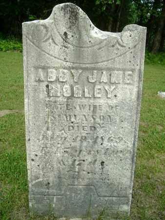 MUNSON, ABBY JANE - Calhoun County, Michigan | ABBY JANE MUNSON - Michigan Gravestone Photos