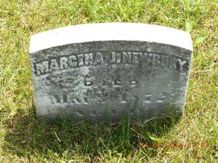 NEWBURY, MARCINA J. - Calhoun County, Michigan | MARCINA J. NEWBURY - Michigan Gravestone Photos