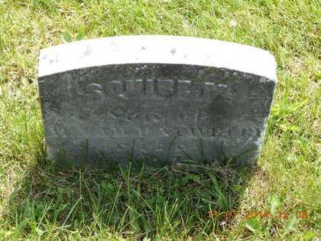 NEWBURY, SQUIRE M. - Calhoun County, Michigan | SQUIRE M. NEWBURY - Michigan Gravestone Photos