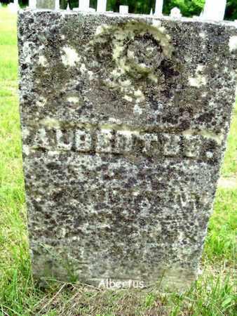 OUTMAN, ALBERTUS - Calhoun County, Michigan | ALBERTUS OUTMAN - Michigan Gravestone Photos