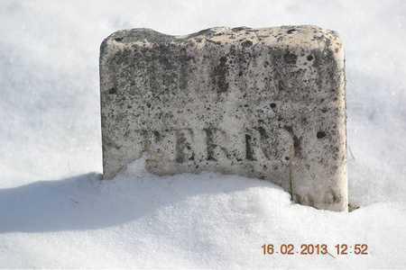 PERRY, HELLEN - Calhoun County, Michigan | HELLEN PERRY - Michigan Gravestone Photos