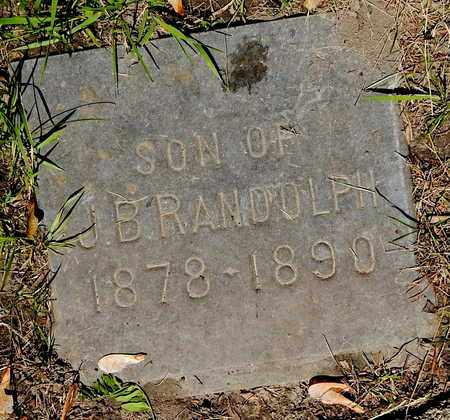 RANDOLPH, JOHN W - Calhoun County, Michigan | JOHN W RANDOLPH - Michigan Gravestone Photos