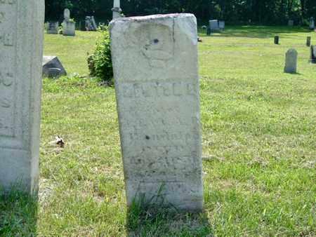 RANDOLPH, NEWTON - Calhoun County, Michigan | NEWTON RANDOLPH - Michigan Gravestone Photos