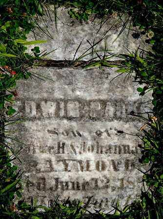 RAYMOND, EDWIN P - Calhoun County, Michigan   EDWIN P RAYMOND - Michigan Gravestone Photos