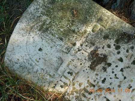 RENCH, DANIEL - Calhoun County, Michigan | DANIEL RENCH - Michigan Gravestone Photos