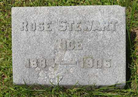 RICE, ROSE - Calhoun County, Michigan | ROSE RICE - Michigan Gravestone Photos