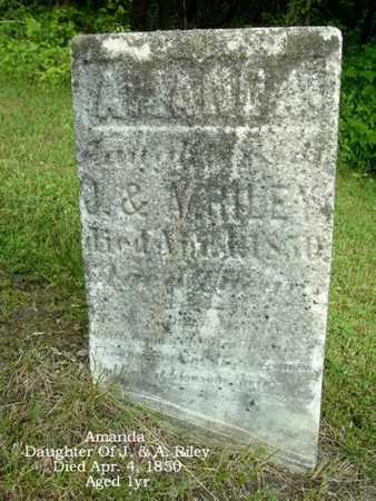 RILEY, AMANDA - Calhoun County, Michigan | AMANDA RILEY - Michigan Gravestone Photos