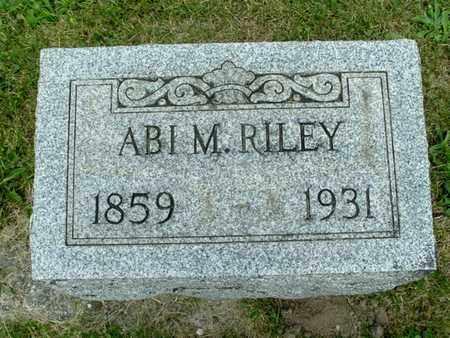 RILEY, ABI M. - Calhoun County, Michigan   ABI M. RILEY - Michigan Gravestone Photos